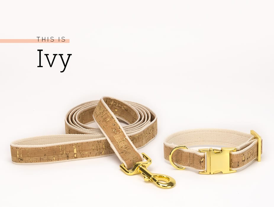 Cork Collar and Leash Ivy